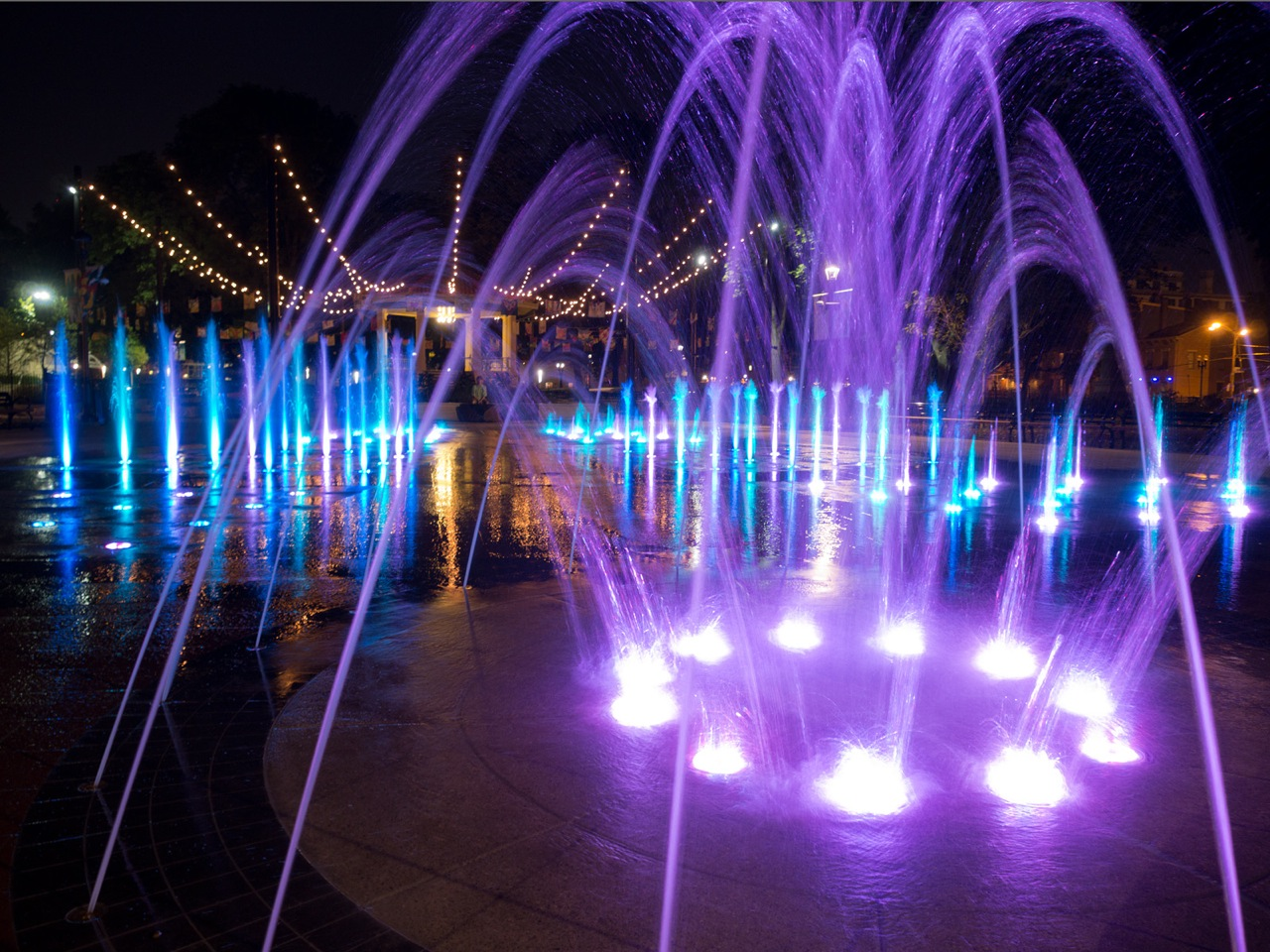 fountainpurple